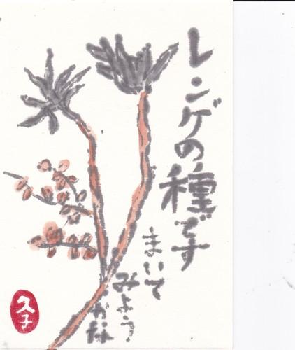 レンゲの種.jpg