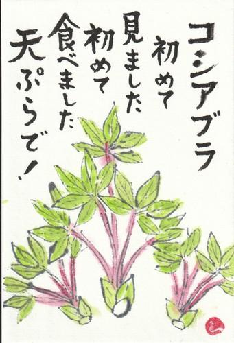 コシ油アブラ.jpg